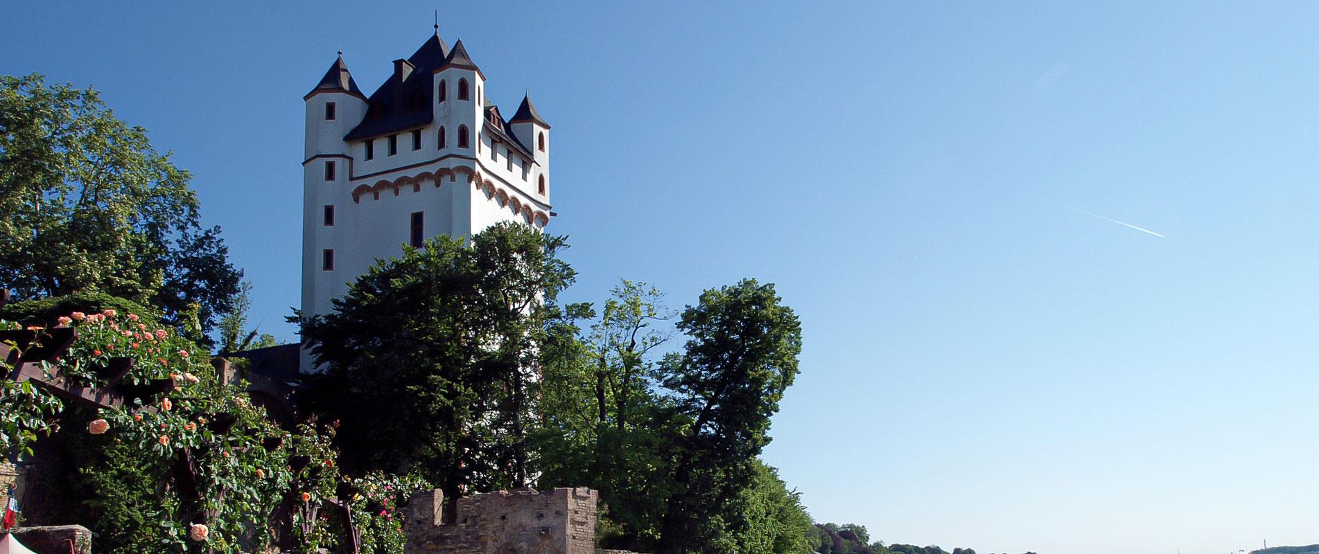 Copyright: www.rheingau.com / Rüdesheim Tourist AG - Dieter Schenk